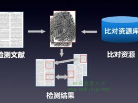 CNKI知网TMLC查重系统的检测原理